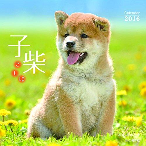 カレンダー2016 子柴 (ヤマケイカレンダー2016)