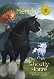 img - for Merida #3: The Ghostly Horse (Disney Princess) (A Stepping Stone Book(TM)) book / textbook / text book