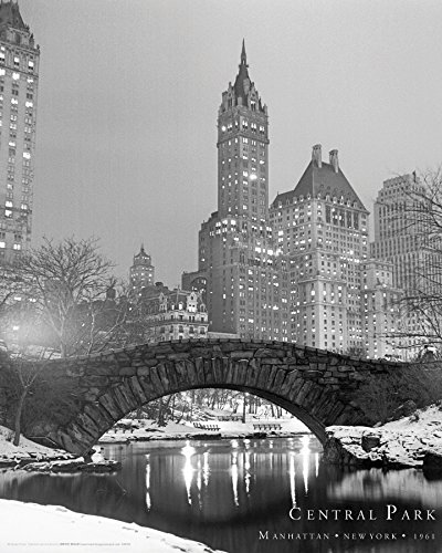 цена на New York City Central Park Decorative Travel Photography Art Print Poster 16 by 20