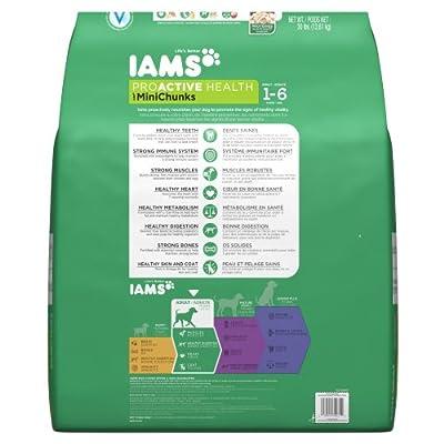IAMS PROACTIVE HEALTH Adult MiniChunks Dry Dog Food 30 Pounds from Iams