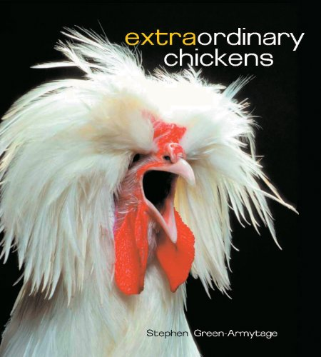 Extraordinary Chickens (Exotic Chickens compare prices)