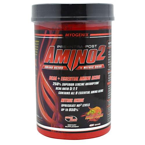 Myogenix Amino2 - Fruit Punch, 420 Grams