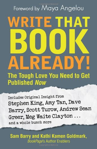 Write That Book Already! The Tough Love You Need to Get Published Now