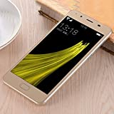 Aobiny Smartphone Cell Phone 5''Ultrathin Android 5.1 Quad-Core 2G+8G 4G/GSM WiFi Bluetooth Dual Smart phone (Khaki)