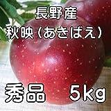 発送中 長野産 秋映りんご 秀品5kg ランキングお取り寄せ