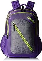 American Tourister Casper Purple Casual Backpack (Casper Bacpack 08_8901836135367)