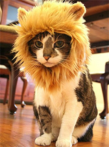 Vedem Pet Lion Mane Wig Costume Hat for Cat Dog Halloween (S)