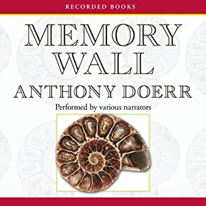 Memory Wall Audiobook