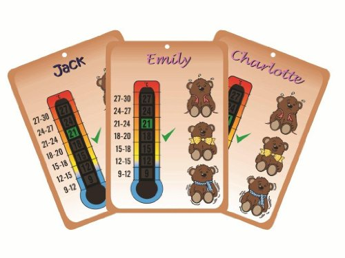 Personalised with your baby's name - Baby Teddy Bears Nursery Room Thermometer. See the Description for the list of 100 names available. Please send us a message with your choice at the time of ordering?