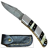Rebel Wolf Zebra Pattern Fine Damascus Folding Knife High End Collectible