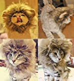 Generic Pet Costume Lion Mane Wig for Cat Christmas Xmas Santa Halloween Clothes Festival Fancy Dress up (Blending, XS)