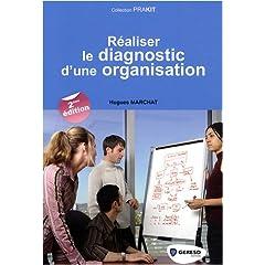 Réaliser le diagnostic d'une organisation 51dffVmcFgL._SL500_AA240_