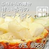 石垣島からの贈り物甘い香りのピーチパイン 6玉入り ランキングお取り寄せ