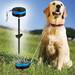 Best Dog Tie Out Cable