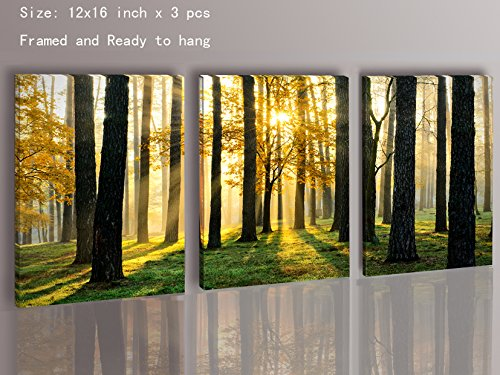 Canvas Prints 3 Panels Framed Ready to Hang Modern Landscape Canvas ...