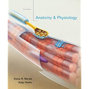 Anatomy & Physiology 4th Edition PDF by Elaine Marieb and Katja Hoehn