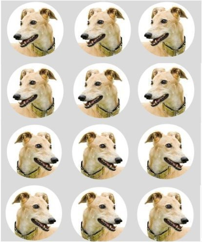 12-hund-greyhound-reispapier-fee-becher-kuchen-40mm-cake-topper-vorschnitt-deko