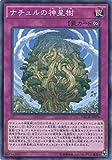 遊戯王カード NECH-JP076 ナチュルの神星樹(ノーマル)遊戯王アーク・ファイブ [ネクスト・チャレンジャーズ]