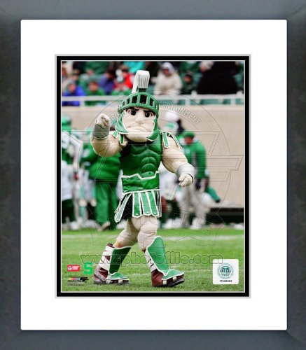 Michigan State Spartans Mascot Sparty Framed Picture 8x10 ncaa south carolina gamecocks flag with grommets