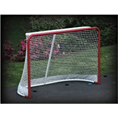Buy EZGoal Hockey Replacement Net with Skirt, 4 x 6-Feet by EZGoal