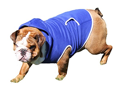 Dog Sweatshirt Hoodie, ROYAL BLUE, Bulldog Large (Bulldog Blues compare prices)