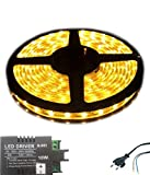IWORLD Water Proof Smd Strip Led Light With Free Output Driver & Power Cord, Yellow