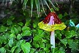 Coloriscape Solar Mushroom Yard Art, Red/Yellow