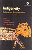 img - for Indigeneity: Culture & Representation book / textbook / text book