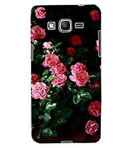 ColourCraft Beautiful Flowers Design Back Case Cover for SAMSUNG GALAXY GRAND PRIME DUOS TV G530BT