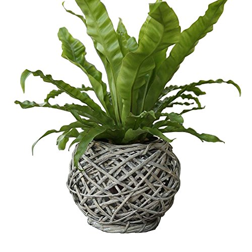 Eco-Friendly Artistic Wicker Woven Tabletop Flower Pot Basket Light Grey