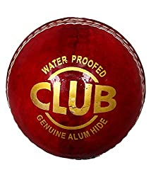 Priya Sports Red Leather Cricket Ball
