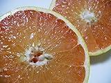 米国フロリダ産 完熟グレープフルーツ/ルビー&ホワイト20個セット ランキングお取り寄せ
