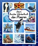 img - for Dein buntes W rterbuch des Meeres book / textbook / text book