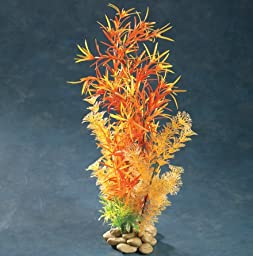 Aquatic Creations Hornwort Aquarium Plant, 8-Inch, Orange/Red