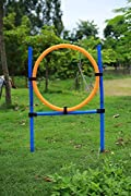 Namsan Dog Outdoor Games,pet Training Jump Hoop, Dog Agility Starter Equipment