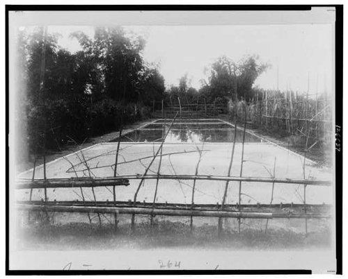 Photo: Native Salt Works,c1899,Salt Industry,Philippine Islands (Philippine Salt compare prices)