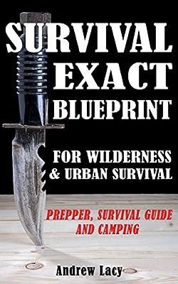Survival: EXACT BLUEPRINT for Wilderness & Urban Survival - Prepper, Survival Guide & Camping (Bushcraft, Off the Grid, Urban Survival, Wilderness Survival, Prepping, Disaster Survival)