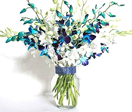 20 Blue & White Orchids | Vase | Rhinestone Ribbon
