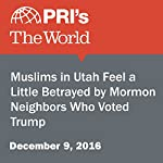 Muslims in Utah Feel a Little Betrayed by Mormon Neighbors Who Voted Trump | Andrea Smardon