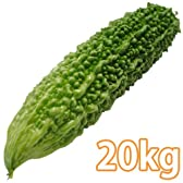 沖縄県産・ゴーヤ 20kg