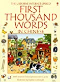 First Thousand Words in Chinese: Internet Linked (Chinese Edition)