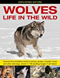 Jen Green Exploring Nature: Wolves - Life in the Wild: Examine the Wonderful World of Wolves, Jackals, Coyotes, Foxes and Other Wild Dogs, Shown in 190 Exciting Images