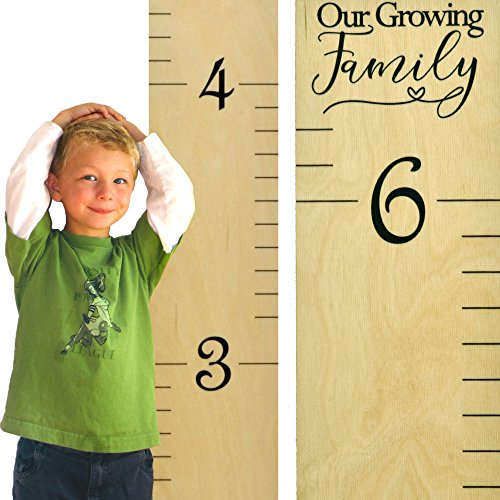 Growth Chart Art | Wooden Growth Chart Ruler for Kids | Wood Height Chart | Baby Shower Gift | Nursery Wall Decor | Our Growing Family (Baby Growing Chart compare prices)