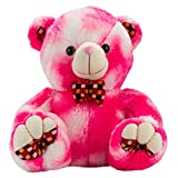Valentines Double Shaded Pink Teddy(20 Inch)