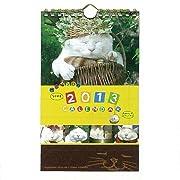 2013年 かご猫 つぶやき卓上カレンダー