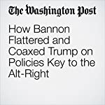 How Bannon Flattered and Coaxed Trump on Policies Key to the Alt-Right | David A. Fahrenthold,Frances Stead Sellers