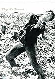 灰とダイヤモンド [DVD] 北野義則ヨーロッパ映画ソムリエ 1959年ヨーロッパ映画BEST10