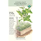 Botanical Interests 7606 Cover Crop Common Buckwheat Organic Large Seed Packet