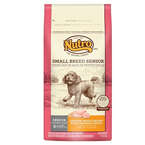 NUTRO-Senior-Dry-Dog-Food