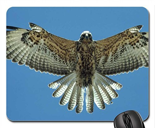 falcon-mouse-pad-mousepad-birds-mouse-pad